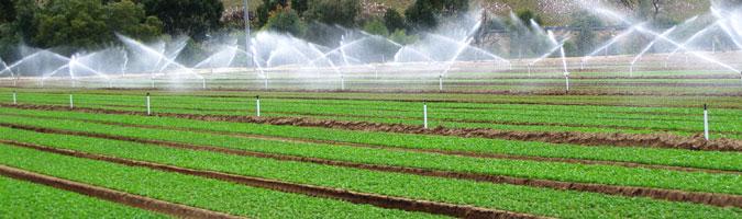 تصفیه آب کشاورزی آب شیرین کن گلخانه ای
