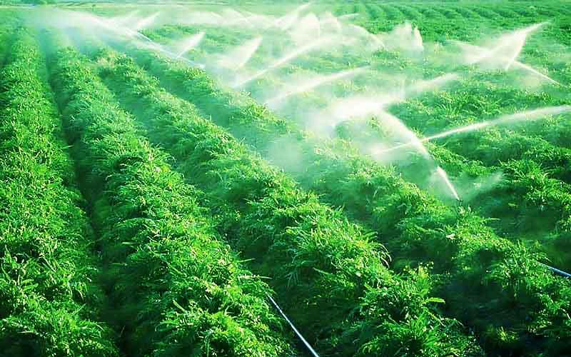 تاثیرات تجهیزات و نوع آبیاری بر روی محصولات و تولیدات کشاورزی