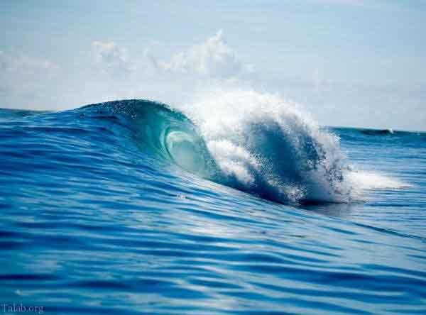 خواص شیمیایی و بیولوژیکی آب ها در یک مطلب کوتاه
